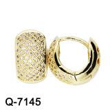 925 het zilveren Gele Geplateerde Goud van de Oorringen van CZ van Juwelen Cirkel Gevormde