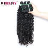 Weave Curly indiano não processado do cabelo humano de Remy do cabelo do Virgin de 100%