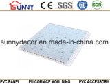 Panneau neuf d'impression de Panneau-PVC de mur de Panneau-PVC-plafond-PVC de PVC de modèle