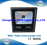 Projector ao ar livre ao ar livre do diodo emissor de luz da ESPIGA luz/30W da inundação do diodo emissor de luz da ESPIGA 30W do UL do preço Ce/RoHS/da alta qualidade de Yaye 18 baixo