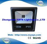Yaye 18 고품질 저가 Ce/RoHS/UL 옥수수 속 30W 옥외 LED 플러드 빛/30W 옥외 옥수수 속 LED 투광램프