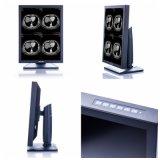 2MP 21-Inch 1600X1200 LED Bildschirm-einfarbiger Monitor, CER genehmigt, Vasographie-Gerät