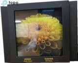 3.2mm nivel bajo de hierro plana templado Ar recubrimiento de baja emisividad vidrio solar (AR-TP)