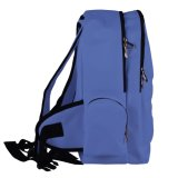 顧客のハイキングバッグオンライン歩くバックパックの女性のバックバッグ