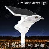 No. 1 fabricante da classificação esperto tudo em uma lâmpada de rua solar com painel ajustável 30W