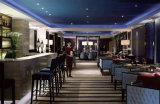 Het Meubilair van het Hotel van de Stoel van de Koffie van de Stoel van de Staaf van de luxe