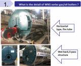 Gaz horizontal automatique de classe de B/chaudière à vapeur au fuel