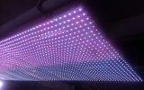 Teto macio do diodo emissor de luz da cortina do diodo emissor de luz P55 para a exposição do estágio