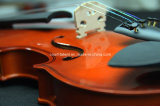 1/84/4 Viool van de Student van het Triplex Beste Verkopende (n-V01)