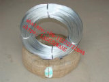 Zinc Coating Steel Wire in U Shape and Coil/Gi Wire