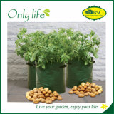Onlylife PE 튼튼한 옥외 채소밭 재배자는 부대를 증가한다