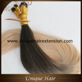 Migliore cheratina europea di Remy Ombre capovolgo le estensioni dei capelli