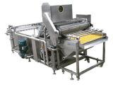 De multifunctionele Wasmachine van de Groente en van het Fruit