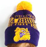 Chapeau brodé par chapeau tricoté brodé de Beanie