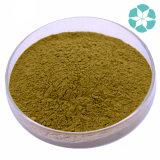 Estratto di Codonopsis Pilosula/estratto Codonopsis di base/estratto di Tangshen