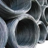 Fil à fil en acier laminé à chaud de haute qualité pour la construction