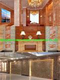 Chaîne de production de marbre décorative UV à haute brillance de feuille de PVC
