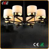 Nueva luz de techo moderna de la lámpara pendiente del LED para el Pasillo