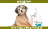 Shampoo natural a base de plantas para mascotas Shampoo para cabello para perros Baño para gatos Shampoo para aliviar la piel seca con picazón
