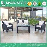 100 Sets/40 do sofá simples do Rattan do QG o sofá ajustado do pátio da desmontagem Kd ajustou-se (o estilo mágico)