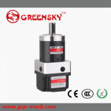 China 12V 24V 48V Gleichstrom Brushless Gear Motor
