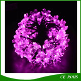 Pfirsich Flower Solar String Holiday Light mit 20/30/50 LED