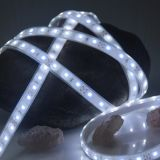 LED-flexible Streifen mit ökonomischem SMD2835 300LEDs