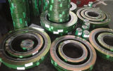 Gewundenes Wound Gaskets mit Outer Rings