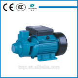 IDB 시리즈 1개의 HP 전기 수도 펌프
