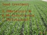 Fungicida di lavorazione delle sementi, Metalaxyl-M& Azoxystrobin& Fludioxonil