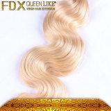 Kwaliteit 100% van Nice Haar van de Blonde van het Menselijke Haar het Russische