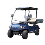 Carro de golfe de 2 Seater com o compartimento dianteiro do caminhão do armazenamento