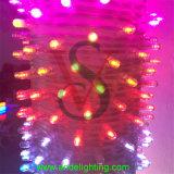 Lichten van het LEIDENE de OpenluchtKoord van Kerstmis voor de Decoratie van de Boom