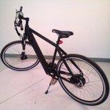 28インチ250W Well-Sold都市Electric Bicycle (LN 28C09)
