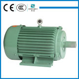 Y Series Three-Phase Induction Motor