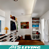 Gang van de Kast van de Besparing van de manier de Creatieve Ruimte in Garderobe (ais-W201)