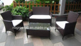 Two Layer Coffee Table Wicker Rattan Conjunto de sofá simples (GN-9048S)