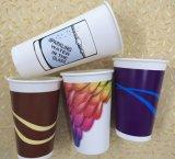 двойная кофейная чашка стены 8-22oz с одиночным покрытием PE