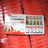 Het l-Carnitine van het Vermageringsdieet 2.0g/1.0g/500mg van het Lichaam van het Gewicht van het verlies Injectie