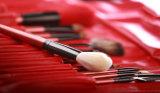 12 parties de cheveu normal de brosse de lecture de balai cosmétique professionnel de renivellement