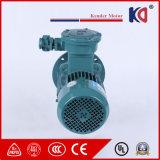 쇄석기를 위한 Yb3-63m1-4 AC 비동시성 폭발 방지 모터