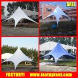 Tente d'étoile d'abri de jardin avec PVC blanc et Alumium Pôle
