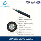 Aperçus gratuits GYTA53 de câble de fibre de jupe de PE de G652D