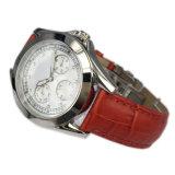 Edelstahl Watch Argument Wristwatch für Lady Lw-12b
