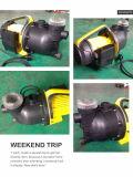 (SDP900-14S) A bomba de jato do jardim da piscina do aço inoxidável com o filtro com UL ETL do Ce aprovou