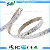 SMD2835 indicatore luminoso di striscia costante della corrente LED con l'indicatore luminoso bianco della decorazione di colore