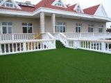 Het Gras van het gebied, uit het Modelleren van de Deur de Decoratie van de Tuin van het Gras