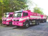 Erste Automobil-Arbeiten von China 20-30 Tonnen Lastkraftwagen- mit Kippvorrichtung