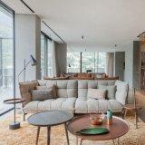 Sofà moderno del tessuto del nuovo di disegno 2017 salone caldo di vendita (F1110)