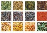 Hons+の新技術の農業機械- CCDの穀物カラー選別機機械